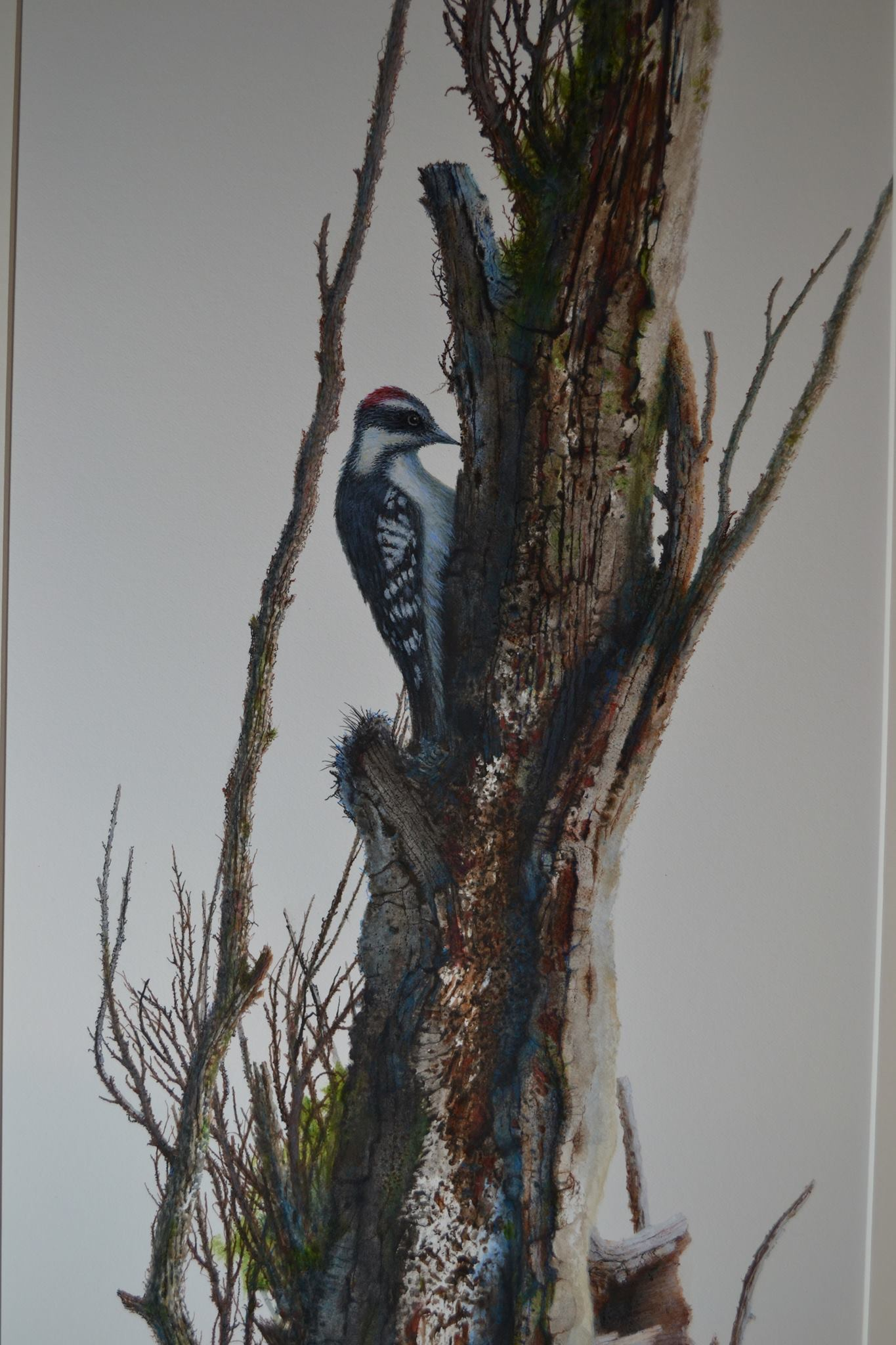 20180707_JackArt_Woodpecker_010